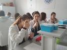 Zbadaj DNA